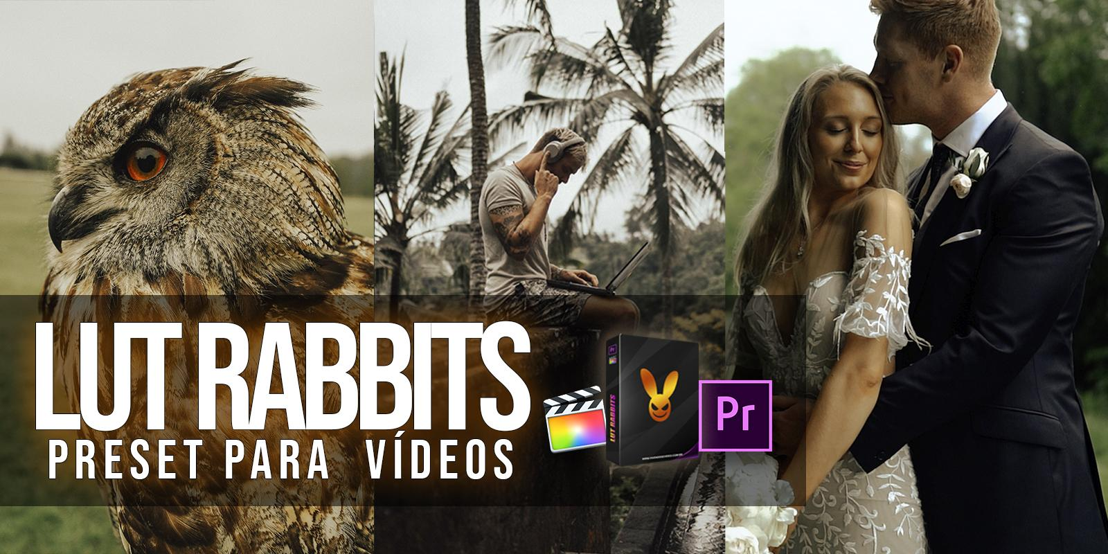 LUT RABBITS - VIDEO PRESET