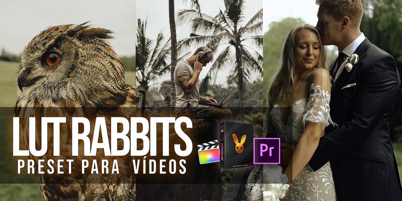 LUT RABBITS - VIDEO PRESET